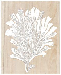 Earth de Fleur Homewares - Coral Mangowood Carved Wall Art White