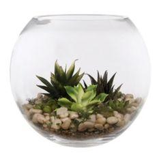 """Home Essentials 11"""" x 11"""" Terrarium Bowl"""