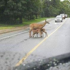 We are all for breastfeeding in public, but can you try not to block the road?