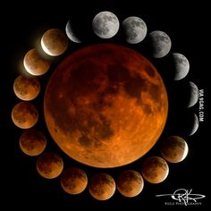 The best blood moon pictures I've seen all day.