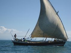 Sailling a tiny ship