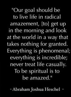 Our goal should be to live life in radical amazement, to get up in the morning and look at the world in a way that takes nothing for granted.  Everything is phenomenal, everything is incredible.  To be spiritual is to be amazed. - Abraham Joshua H