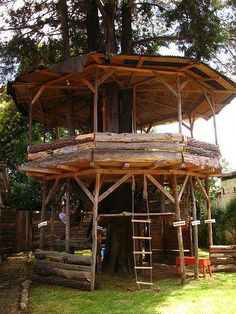 Architecture - Tree House - Circular one! Backyard Playground, Backyard For Kids, Backyard Ideas, Cubby Houses, Play Houses, Cool Tree Houses, Tree House Designs, Diy Holz, In The Tree