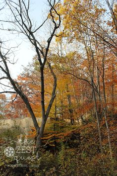 Hiking-Challenge-2015-Ohio-Hike-5-Peninsula-Quarry-highlighted-by-fall-colors-2-The-Zest-Quest