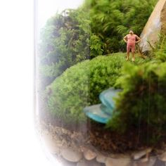 Fab.com | Verdant Worlds Contained