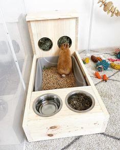 Bunny rabbit hay feeder/litter pan/food & water bowls