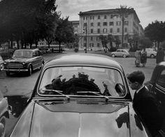 Roma (1960)