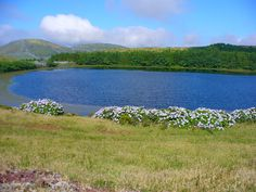 Lagoa-Ilha das Flores-Açores Portugal