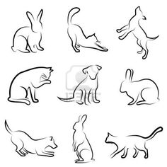 Good studies in line pressure, as well as negative space. Bunnies, cats, and dogs, oh my! rabbit, kitty, doggy