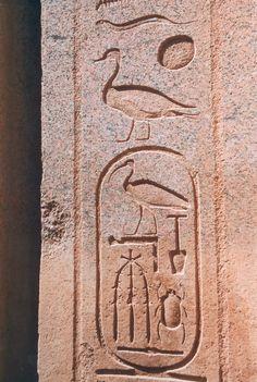 Cartiglio di Thutmose III, Karnak, Egitto