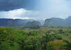 rain forest in Cuba  Viñales Valley, Cuba