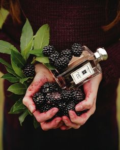 Jo Malone London's new Blackberry & Bay