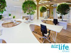 Mejoramos tu sistema de aire acondicionado con tecnología sustentable. LAS MEJORES SOLUCIONES EN PURIFICACIÓN DEL AIRE. Sabemos que los sistemas de climatización son generadores de microorganismos y agentes contaminantes, lo cual puede evitarse dándoles el mantenimiento adecuado. En AirLife, creamos la tecnología más innovadora que nos ayuda a tener aire puro, te invitamos a conocerla en nuestro sitio en internet www.airlife.com. #airlife