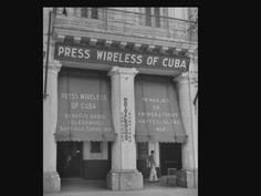 Animal Jam Memes, Cuban, Havana, Broadway Shows, History, Animals, Historia, Animales, Animaux