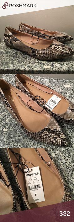 Snake Skin Size 8 Express Flats Beautiful NEW WITH TAGS Size 8 Snake skin Express flats Express Shoes Flats & Loafers