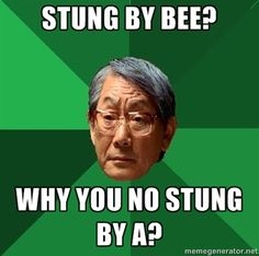 High Expectations Asian Father - Stung by bee? why you no stung by a?