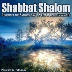 May there be true, deep & lasting peace. Shabbat Shalom!