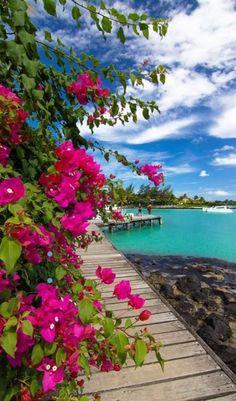 Heavenly Mauritius