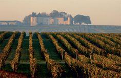 Anson: The next great #Bordeaux wine scientist? #MorrellWine #wine http://www.decanter.com/wine-news/opinion/news-blogs-anson/anson-the-next-great-bordeaux-wine-scientist-274223/?utm_content=buffer34ef9&utm_medium=social&utm_source=pinterest.com&utm_campaign=buffer