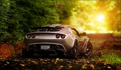 Autumn Redux. by VisualEchos, via Flickr #lotus #exige  - for more Lotus inspirations, check out our profile.