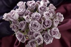 sterling and lilac rose bouquet Lilac Roses, Purple Flowers, Sterling Roses, Sterling Silver, Coffee Filter Roses, New Years Eve Weddings, Lilac Wedding, Beautiful Roses, Beautiful Bouquets