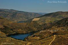 O Douro no Arnozelo com o monte da Gafaria na outra margem