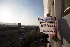"""""""Cinq jours plus tard, Syngenta Seeds Holding est dissoute, tout son patrimoine est transféré à Syngenta France. La filiale du géant de l'agrochimie demande l'extinction des poursuites.""""... Magique ?.. https://reporterre.net/Il-pollue-il-disparait-la-ruse-du-semencier-Syngenta-Seeds-pour-echapper-a-son"""