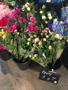 Peonies from Whole Foods buckhead on 11.6.16