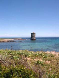 Tour Génoise Santa Maria, dans le Cap Corse. Santa Maria, Cap Corse, Le Cap, France, Sailing, Photos, Tours, Nature, 18th Century