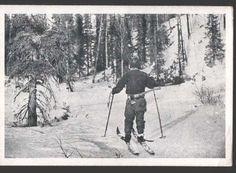 115595 Russia KARELIAN Lumberjack Vintage Postcard | eBay