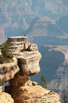 Amazing Snaps: Dangerous Spot...looks like the Grand Canyon!