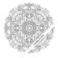 dutch bird mandala an adult coloring page many more on emerlyeartsetsy