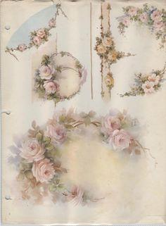 Wonderful designs in this rose study by Sonie Ames
