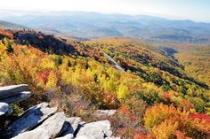 Blue Ridge Parkway Guide, Asheville NC - TOP 50 Things to Do mile by mile