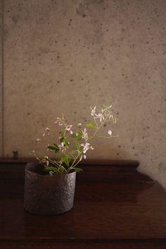 「土田和茂作 福椀」の画像 -ももふく的日常-  Ameba (アメーバ)
