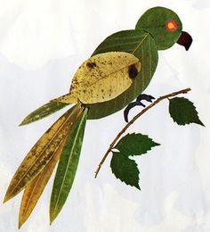 Look around in the garden for fallen leaf's, small twigs, grass and bark. Children can create a picture using the different shapes, just like this bird.