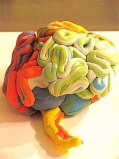 Abstract Brain exhibition made of different materials