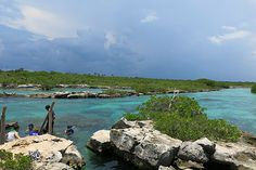 Visiting Akumal has always been my favorite day-trip from Playa del Carmen. Whenever I meet a new visitor to Playa it is THE place I recommend they visit. The beach is pristine and the crystal clea...
