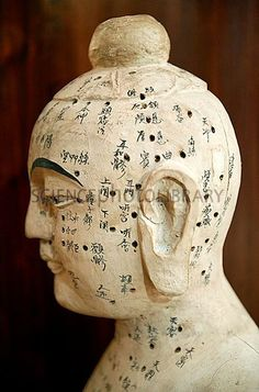 Ancient Chinese Medicine   Chinese acupuncture model - Stock Image C010/4006 - enlarged - Science ...