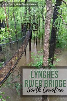 Are you looking for things to do in South Carolina? Check out Lynches River Bridge Park. The kids will love this fun travel destination and it's a great vacation spot to visit. We'll share our off the beaten path and unique places in South Carolina so you Great Vacation Spots, Great Vacations, Vacation Places, State Parks, Countries To Visit, Travel Usa, Fun Travel, Travel Ideas, Fun Places To Travel