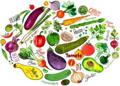 Magrikie : Illustration  	 : food / veggies / kitchen