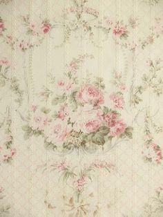 Fleur Antoinette OP (2010)