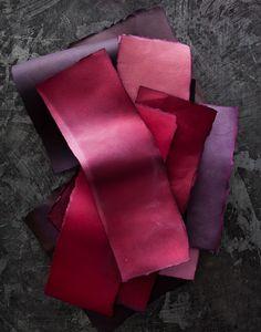 Still Life 'Color Studies' by Burcu Avsar - Red Rouge Pantone, Pantone Red, Magenta, Purple Dye, Red Purple, Pink, Color Studies, Colour Board, Color Of Life