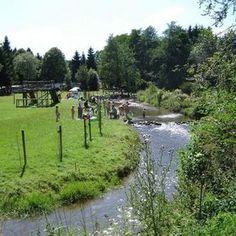 Camping Tonny   Belgische Ardennen