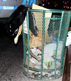 Giant SNAKE found dead in Manhattan trash can Giant Snake, News Us, Kpop, Fan, Mail Online, Manhattan, Hand Fan, Fans