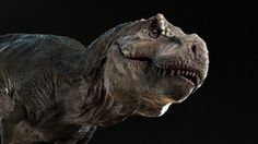 Modelling in Maya Sculpting in ZBrush Texturing in ZBrush / Mari / Photoshop Rendered with Arnold Post in Nuke You can see this T.Rex animated on my demo ! Jurassic World, T Rex Jurassic Park, Dinosaur Art, Dinosaur Fossils, Jurrassic Park, Cool Dinosaurs, Fierce Animals, Photoshop Rendering, Anthropologie