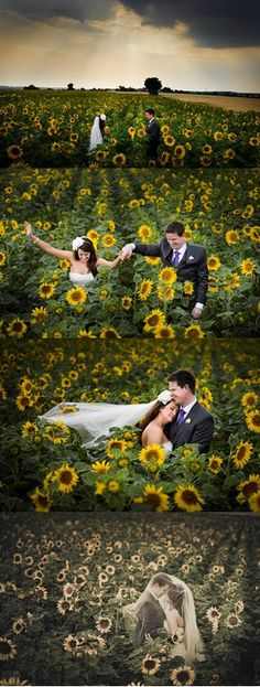 Sunflower Wedding, Summer, Nature, Storm Approaching #chateauchallain #castleweddings France
