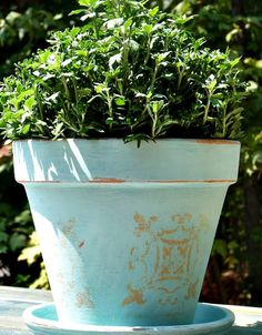 DiY Stenciled Terracotta Pot - and other ideas for terracotta pots