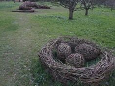 Dragon eggs in the nest, Angela Morley The Bishops Palace in Wells commission: a 12 meter long dragon, two large nests and 5 special dragon's eggs.  The dragon is hidden in the arboretum at the Palace and forms the end point to a children's dragon trail.