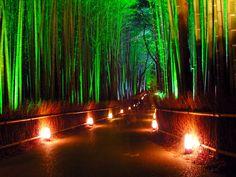 全部知ってる?米国CNNが選んだ『日本の最も美しい場所』31選 | RETRIP[リトリップ]